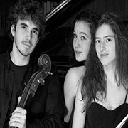 Trio Karenine